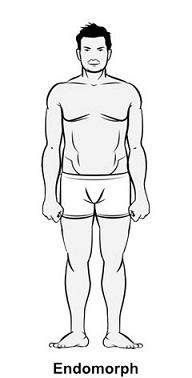 Определить телосложение по лучезапястный сустав снимки дисплазии суставов ротвейлера